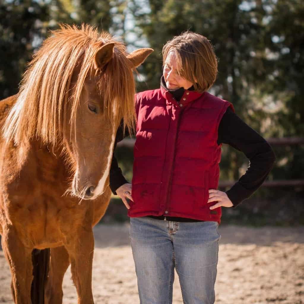 Neue Wege gehen: zum Beispiel in der Kommunikation mit meinem Pferd