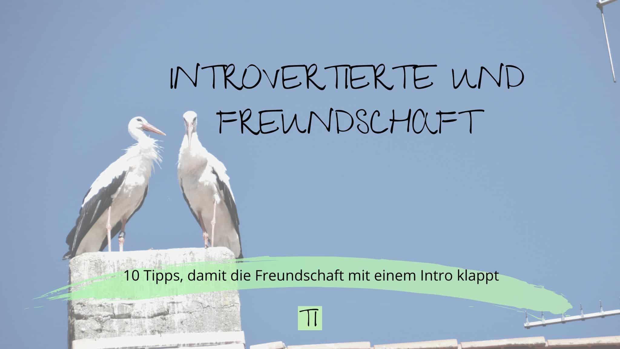 Titel: Introvertierte und Freundschaft | Team Introvertiert